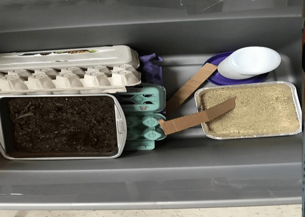 Cricket Brooder Setup