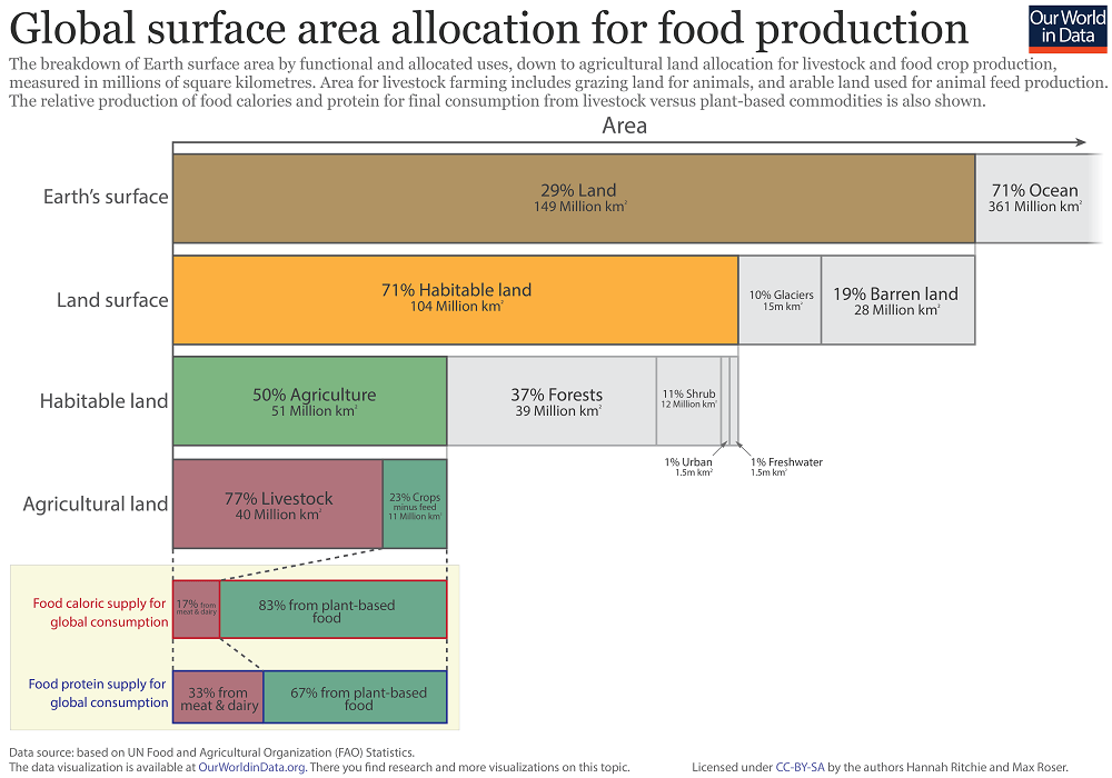 Global surface area allocation for food production