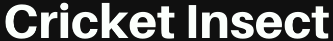 CricketInsect.com